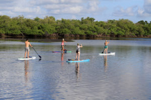 paddle board class